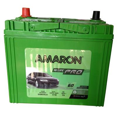 AMARON PRO-0055B24LS